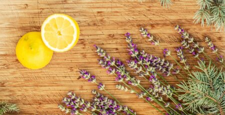 All About Terpenes A Complete Guide